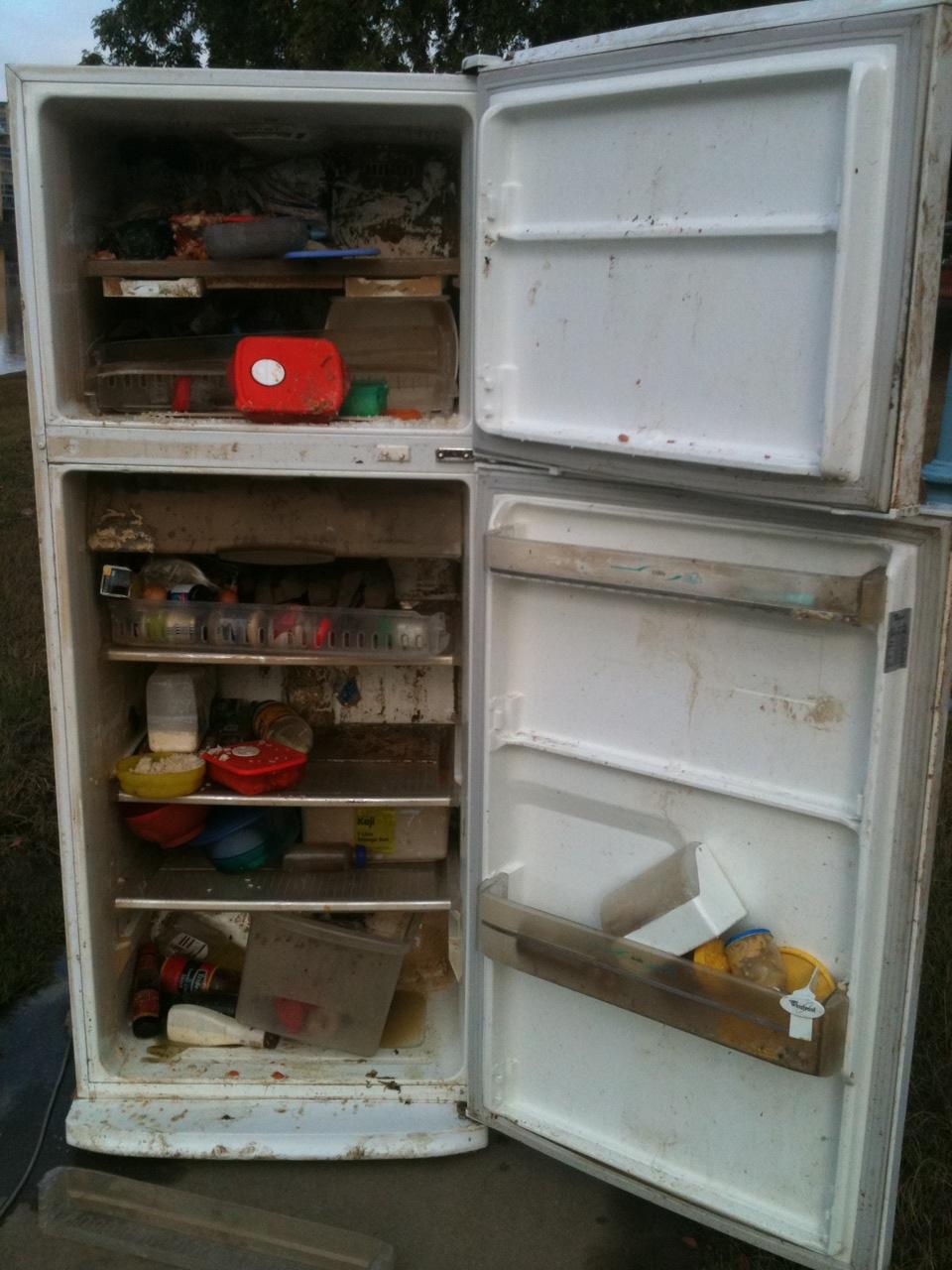 how to clean mold in mini fridge